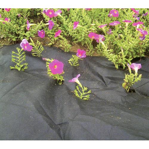 Textilia Garden B4403 RollPack 50g/m2, čierna, 0.9x10m