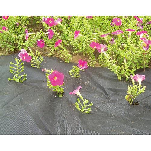 Textilia Garden B1303 3,2x05 m, netkaná, 50 g/m, čierna